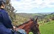 horse-slide-fullday