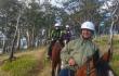 horse-slide-high